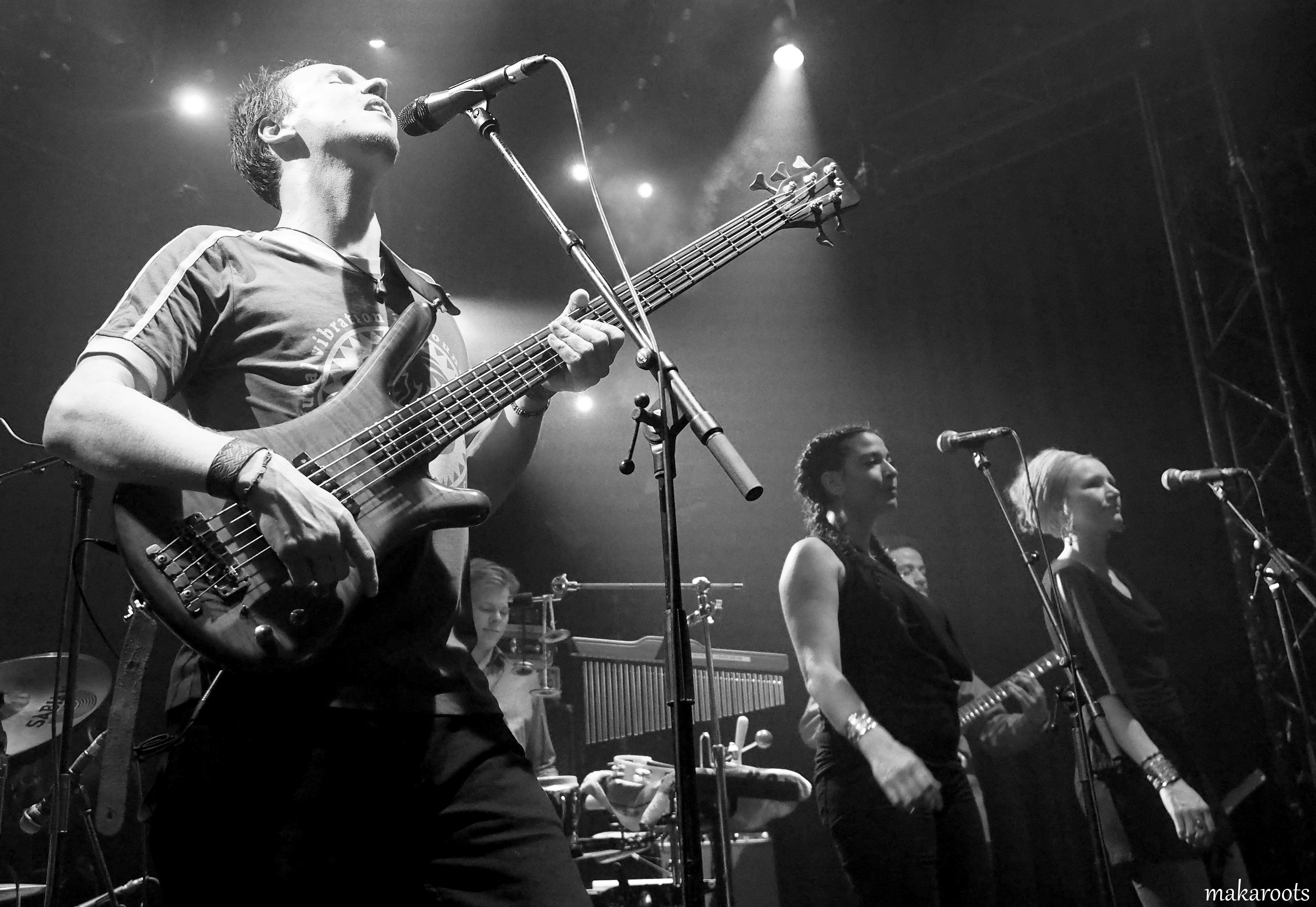 The_Roots_Ark_Live